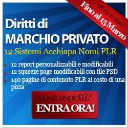 Ebook con Diritto di Rivendita e PLR